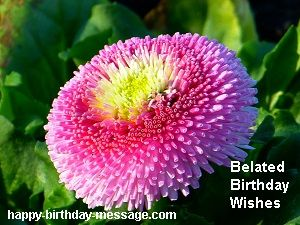 10 Belated Happy Birthday Wishes Funny SMS Messages